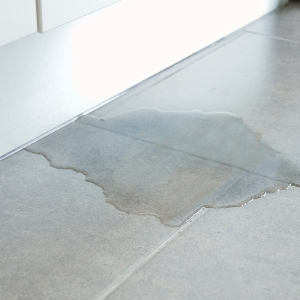 Six top tips to protect your valuables and property against water damage